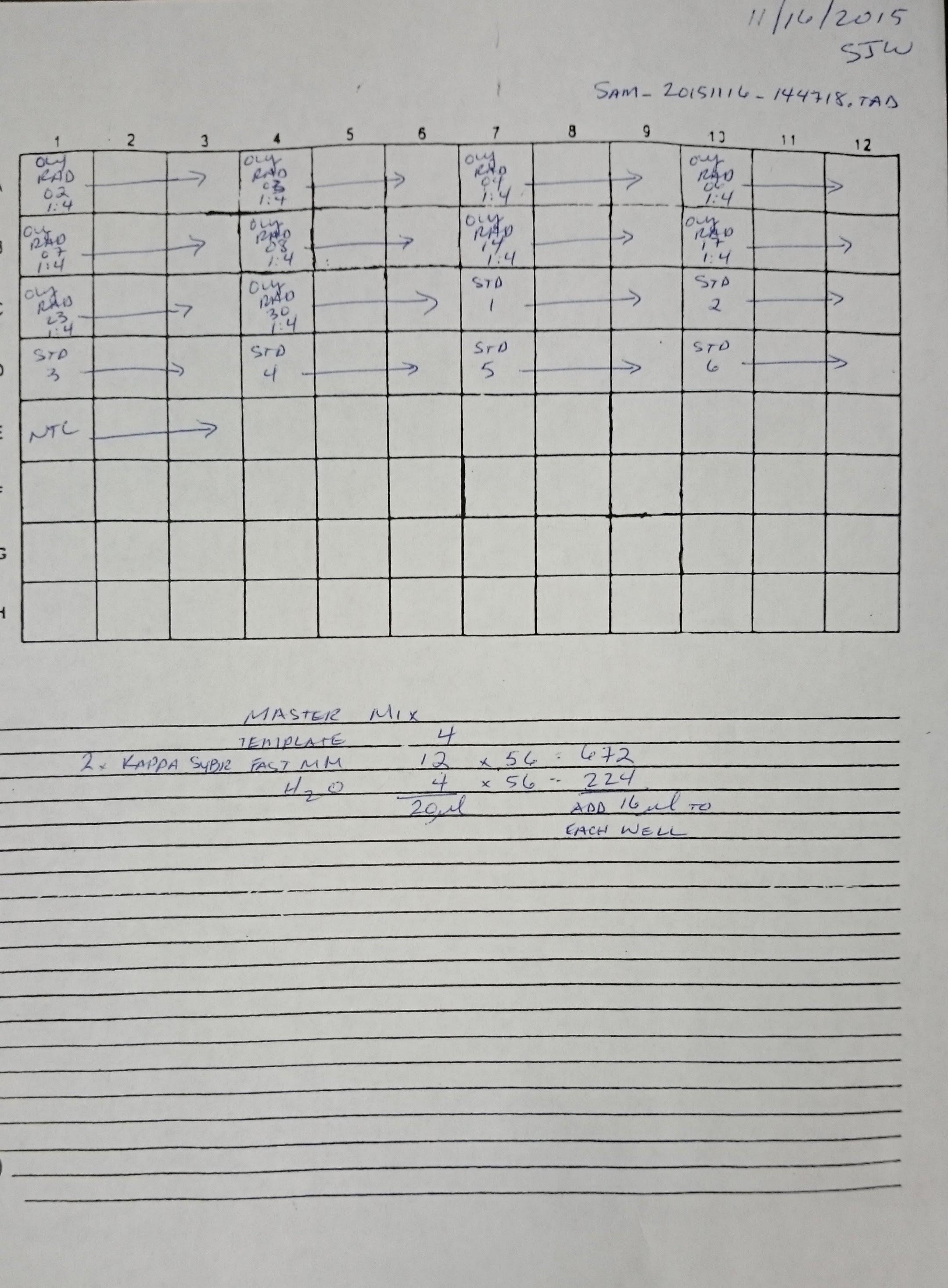 qPCR   Sam\'s Notebook