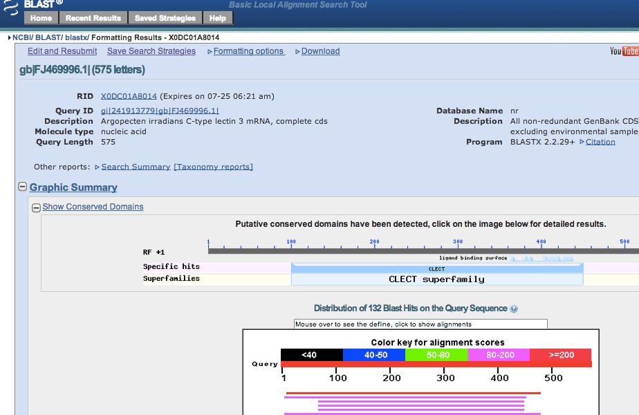 NCBI_Blast_gb_FJ469996_1___575_letters__19806D85.png