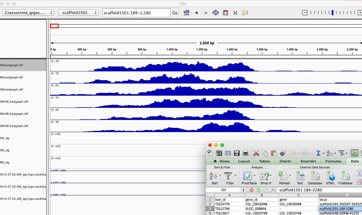 splicing_diff_and_IGV_and_Fibrocystin-L_-_Google_Search_and_splicing_diff_1AD2E02E.png