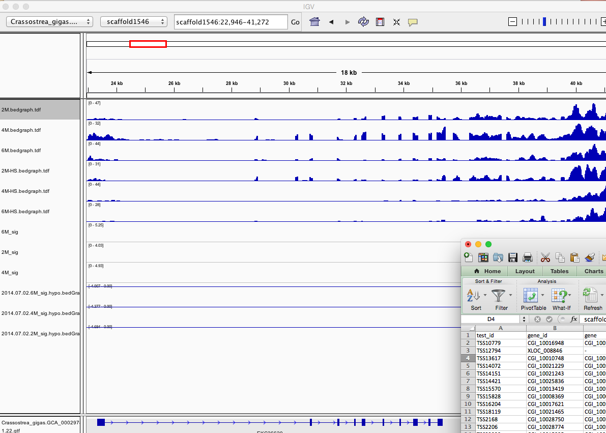 splicing_diff_and_IGV_and_Fibrocystin-L_-_Google_Search_and_splicing_diff_1AD2E085.png