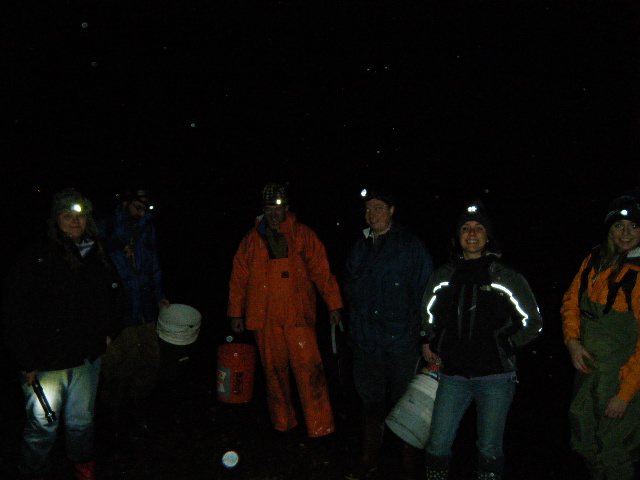 Our intrepid volunteers on a cold drizzly night!