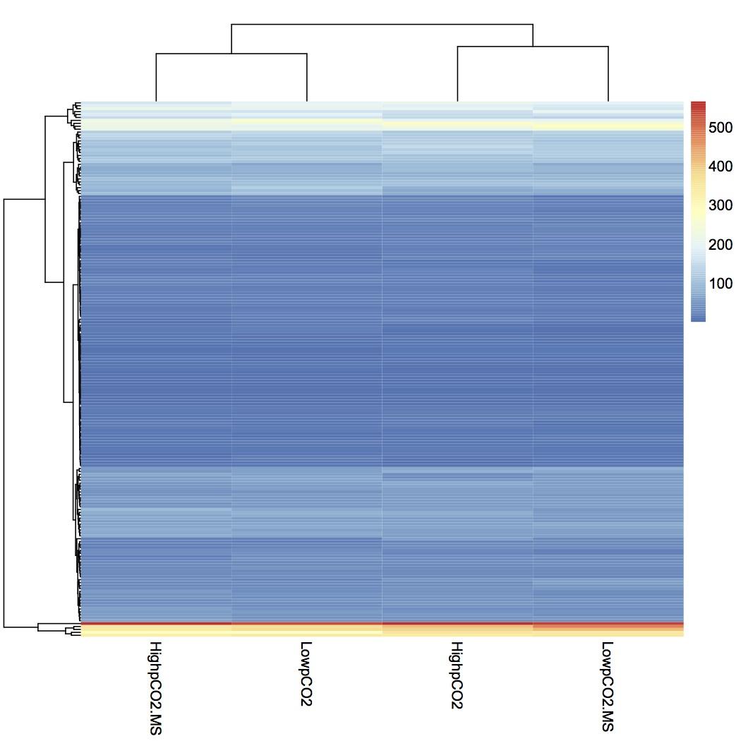 external image heat%20map%20treatment%20groups%20020113.jpg